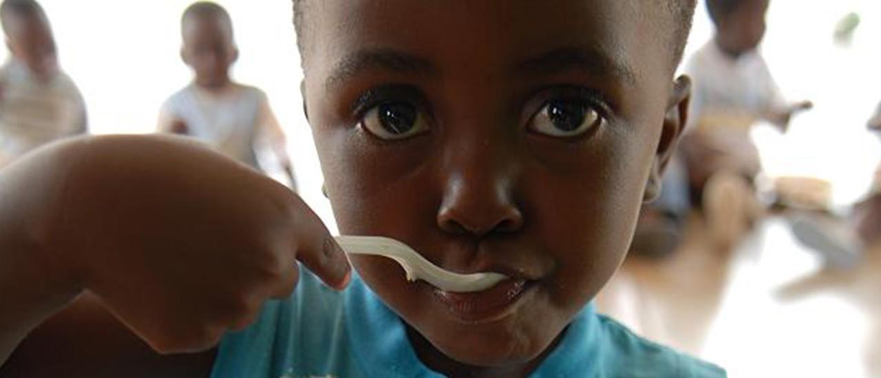 Ndlovu Nutritional Units